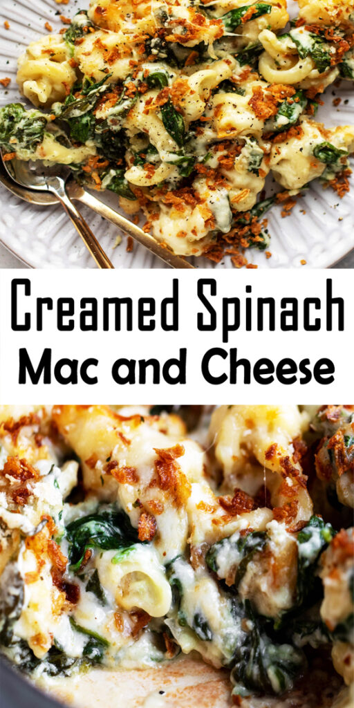 Creamed Spinach Mac and Cheese Recipe